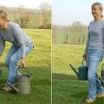 Prevent back pain in the garden this spring